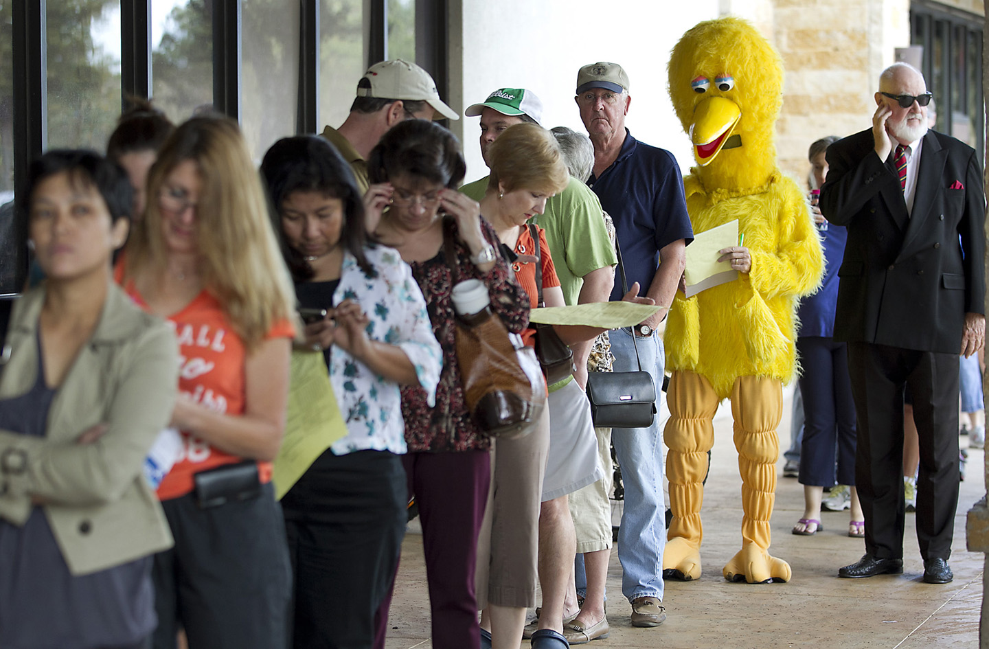 Rbz kelso big bird voting 02